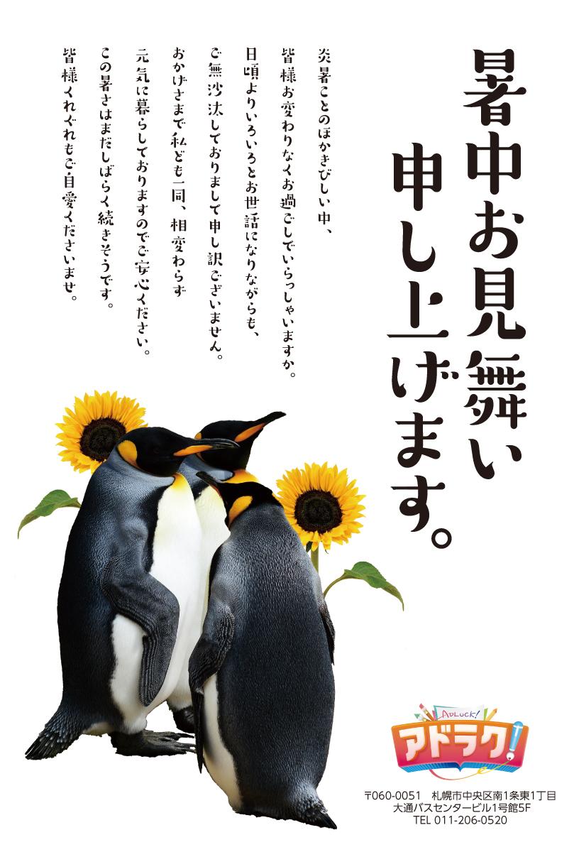 10_sho_00023